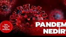 Pandemi Nedir? Geçmişte Hangi Hastalıklar İçin Pandemi İlan Edildi?