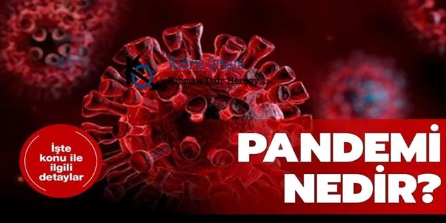 Pandemi Nedir